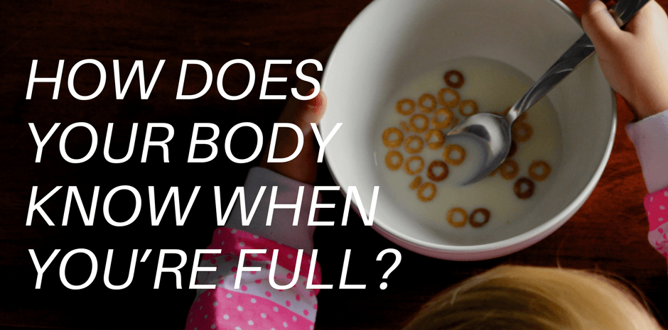 How does your body know when you're full?